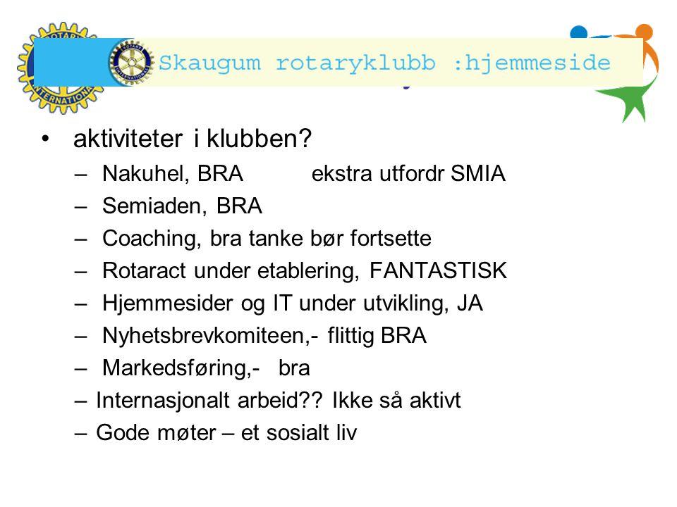 Hønefoss Rotary Klubb • aktiviteter i klubben.