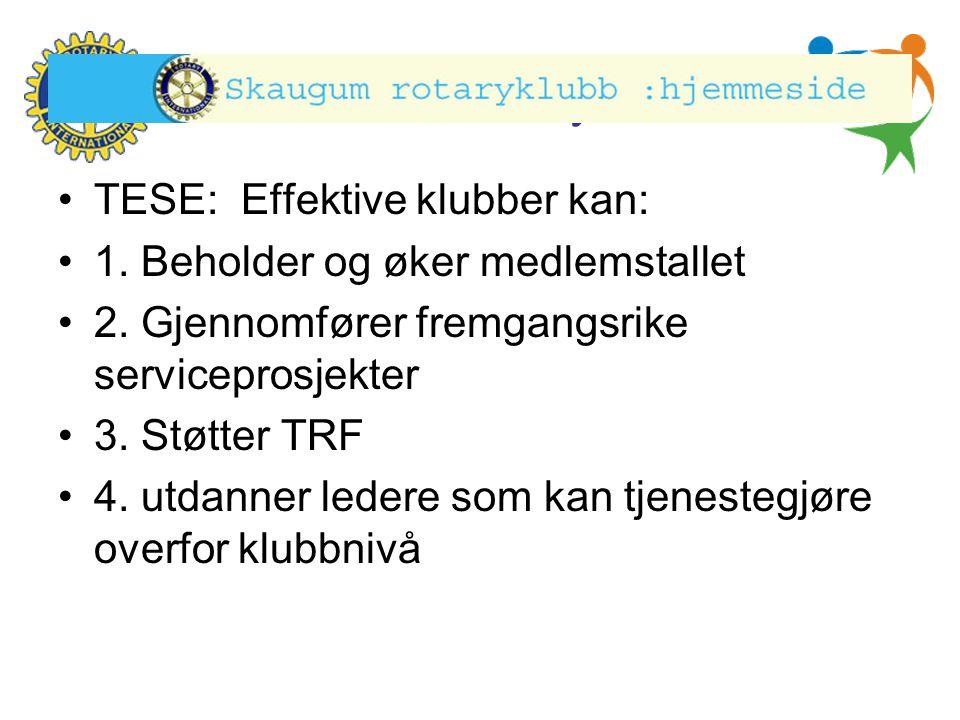 Hønefoss Rotary Klubb •TESE: Effektive klubber kan: •1. Beholder og øker medlemstallet •2. Gjennomfører fremgangsrike serviceprosjekter •3. Støtter TR