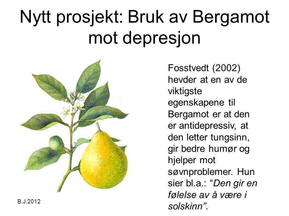 Nytt prosjekt: Bruk av Bergamot mot depresjon B.J.2012 Fosstvedt (2002) hevder at en av de viktigste egenskapene til Bergamot er at den er antidepressiv, at den letter tungsinn, gir bedre humør og hjelper mot søvnproblemer.