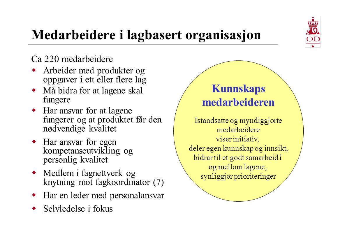 Medarbeidere i lagbasert organisasjon Ca 220 medarbeidere  Arbeider med produkter og oppgaver i ett eller flere lag  Må bidra for at lagene skal fun