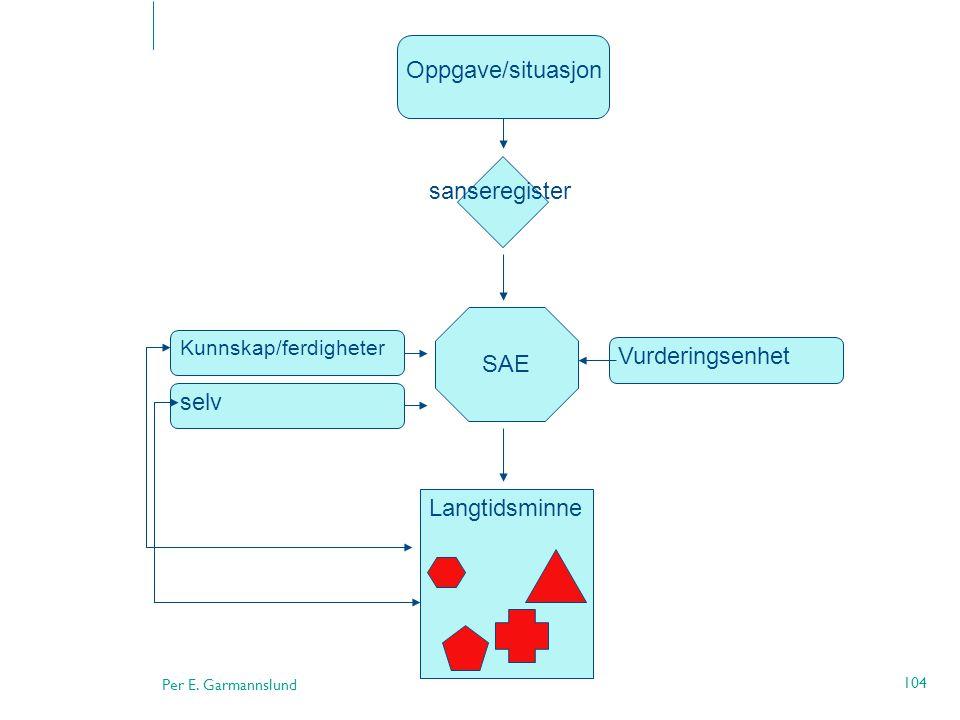 Per E. Garmannslund 104 Oppgave/situasjon sanseregister SAE Kunnskap/ferdigheter selv Vurderingsenhet Langtidsminne