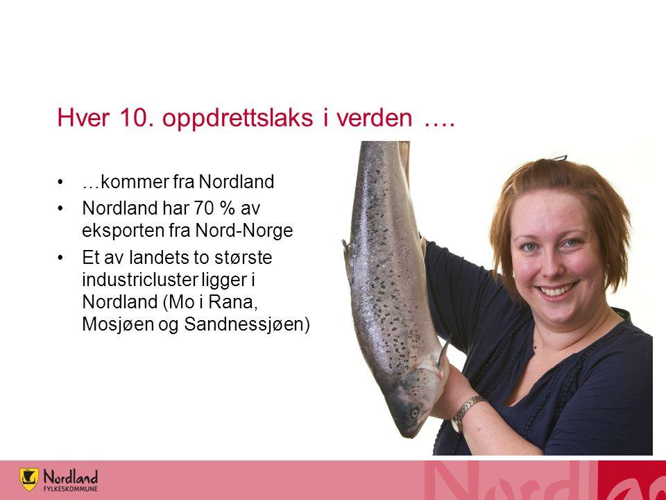 Hver 10. oppdrettslaks i verden …. •…kommer fra Nordland •Nordland har 70 % av eksporten fra Nord-Norge •Et av landets to største industricluster ligg