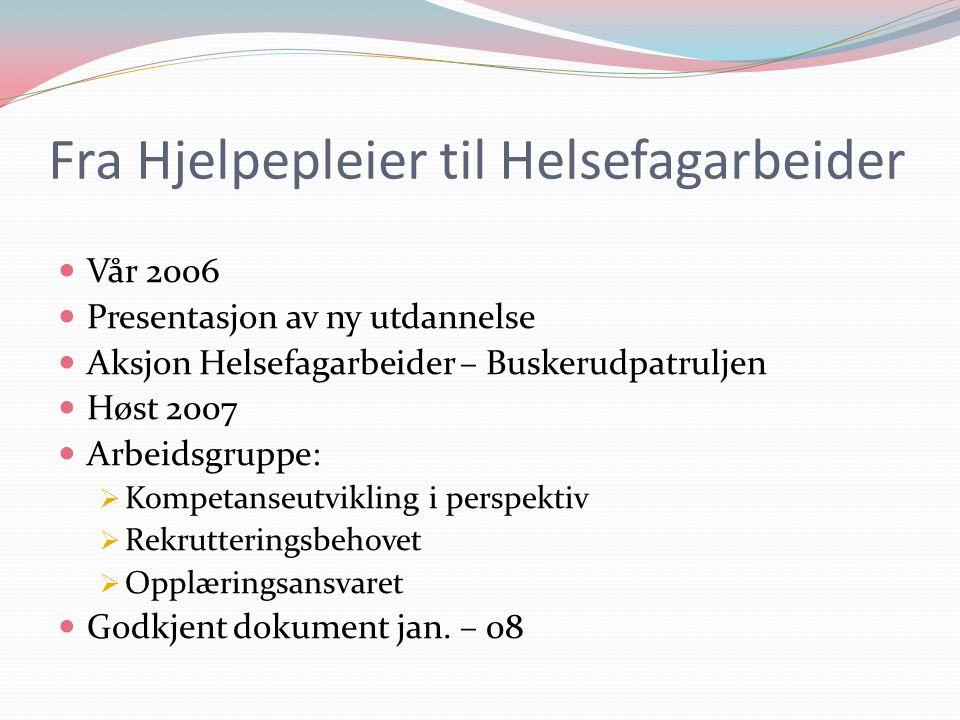 Fra Hjelpepleier til Helsefagarbeider  Vår 2006  Presentasjon av ny utdannelse  Aksjon Helsefagarbeider – Buskerudpatruljen  Høst 2007  Arbeidsgr