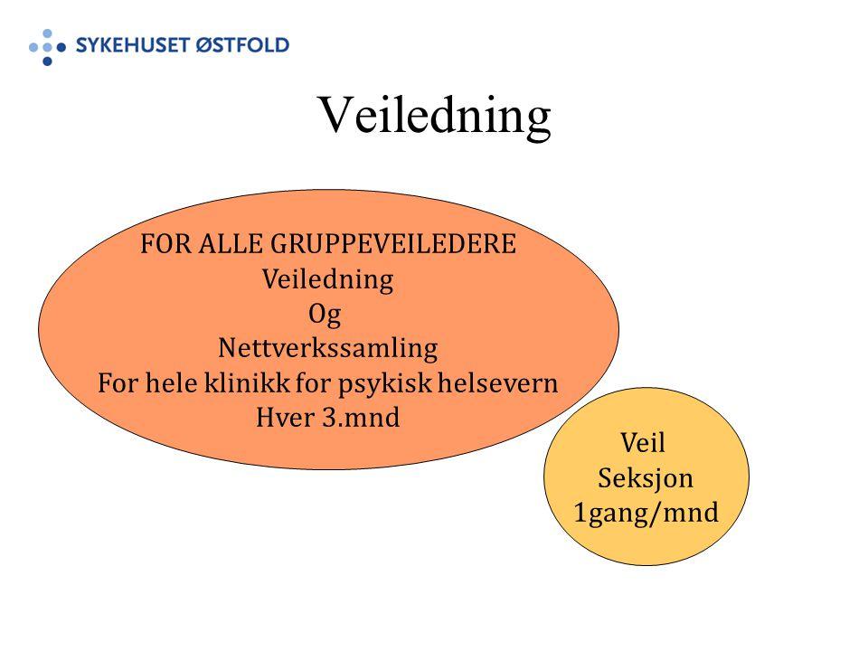 Veiledning FOR ALLE GRUPPEVEILEDERE Veiledning Og Nettverkssamling For hele klinikk for psykisk helsevern Hver 3.mnd Veil Seksjon 1gang/mnd