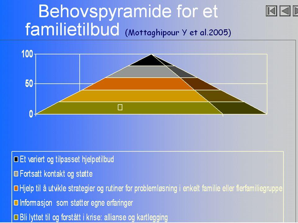 Behovspyramide for et familietilbud (Mottaghipour Y et al.2005)
