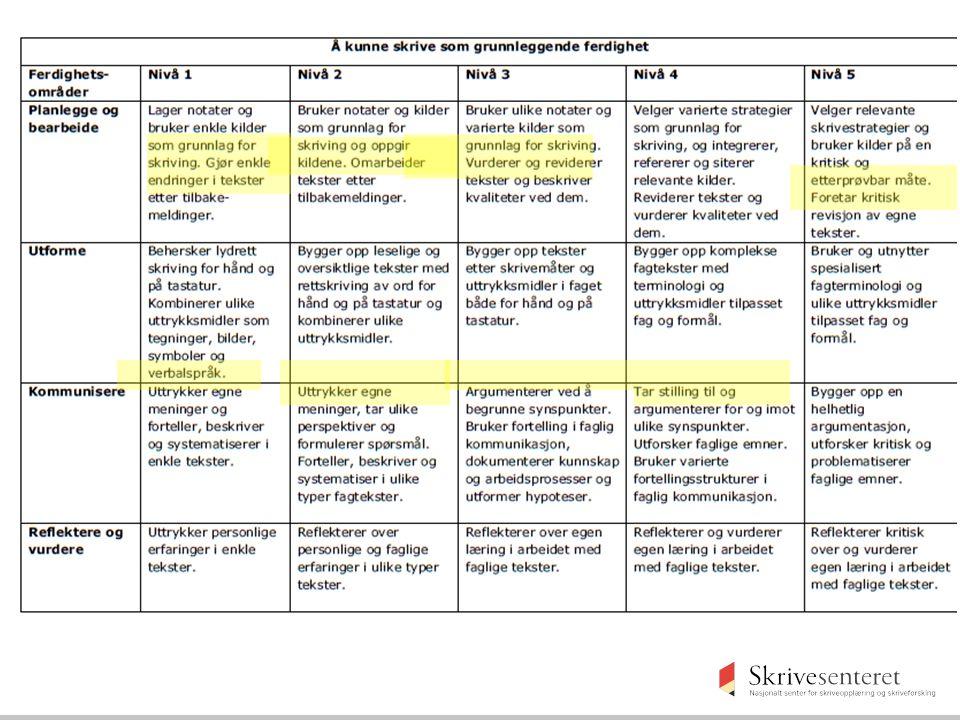 Revisjonskompetanse Rammeverk for grunnleggende ferdigheter, 2012
