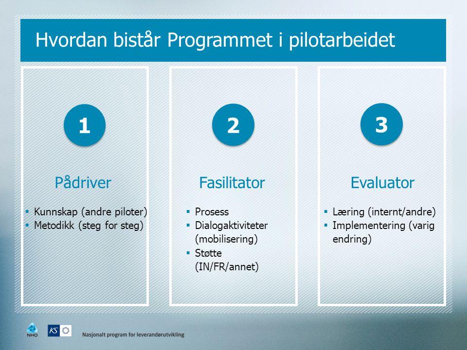 Hvordan bistår Programmet i pilotarbeidet Pådriver  Kunnskap (andre piloter)  Metodikk (steg for steg) Fasilitator  Prosess  Dialogaktiviteter (mo
