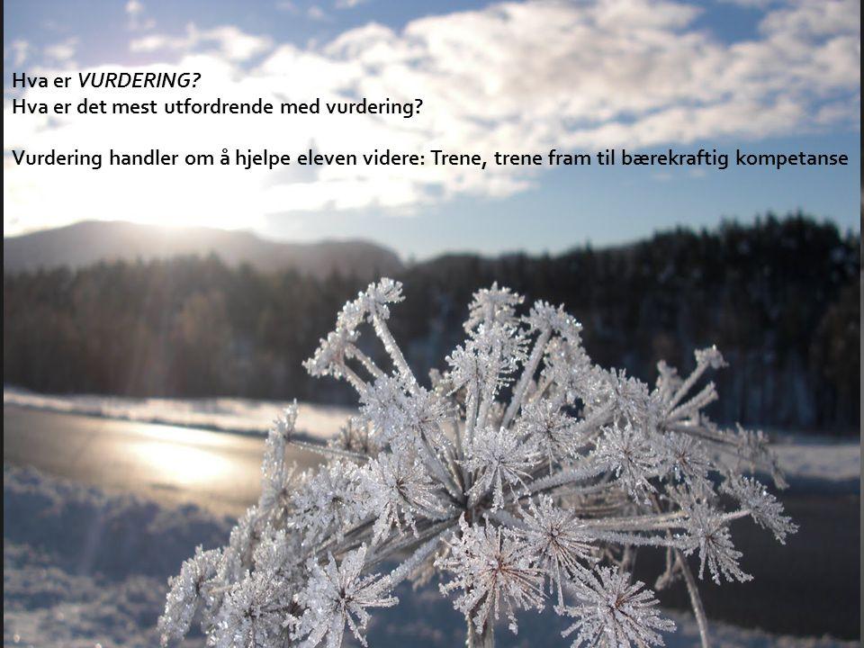 • Underveisvurdering • MÅL: Heile tida – fram mot sluttkompetanse, jf.