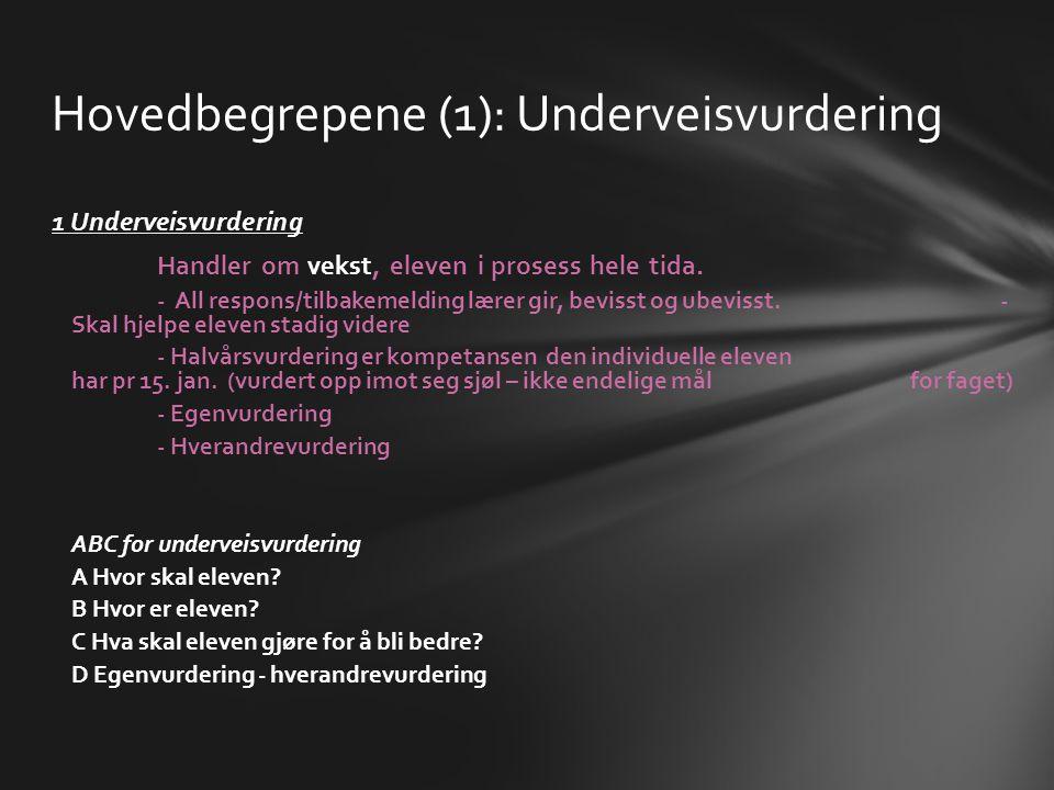 Hovedbegrepene (1): Underveisvurdering 1 Underveisvurdering Handler om vekst, eleven i prosess hele tida. - All respons/tilbakemelding lærer gir, bevi