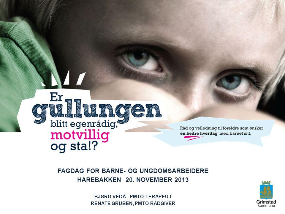 FAGDAG FOR BARNE- OG UNGDOMSARBEIDERE HAREBAKKEN 20. NOVEMBER 2013 BJØRG VEDÅ, PMTO-TERAPEUT RENATE GRUBEN, PMTO-RÅDGIVER