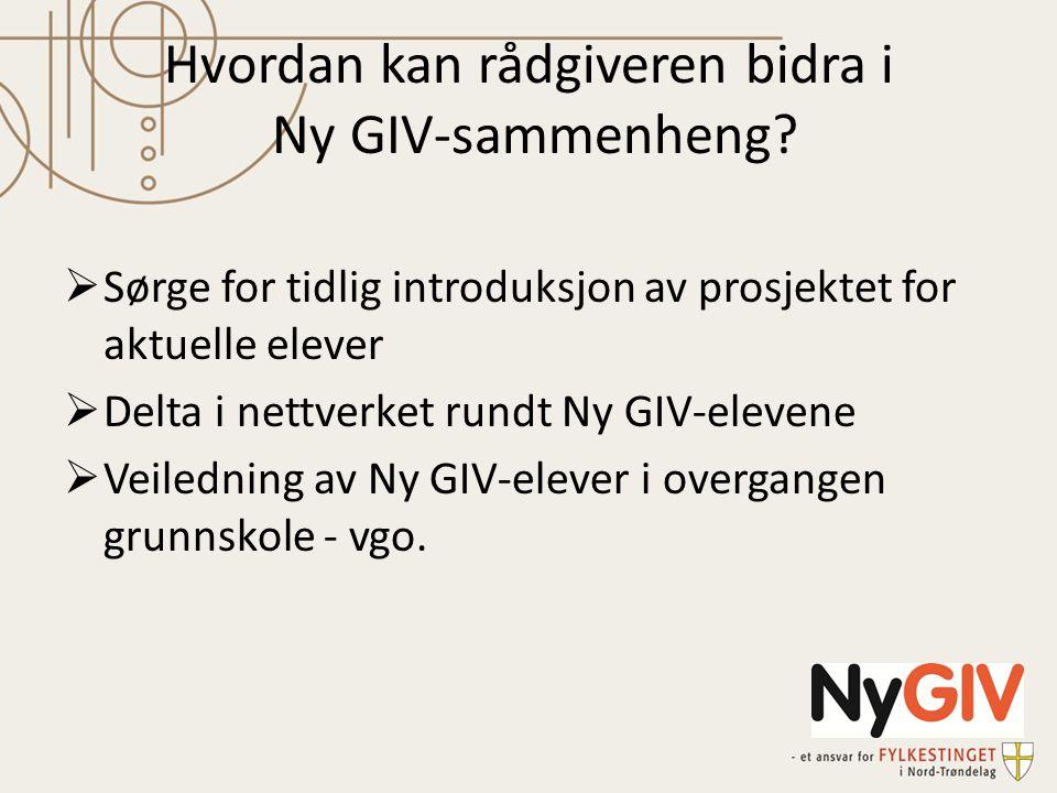Hvordan kan rådgiveren bidra i Ny GIV-sammenheng.