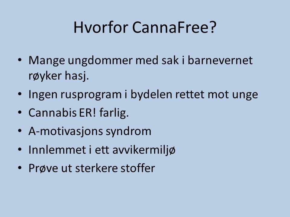 Hvorfor CannaFree? • Mange ungdommer med sak i barnevernet røyker hasj. • Ingen rusprogram i bydelen rettet mot unge • Cannabis ER! farlig. • A-motiva