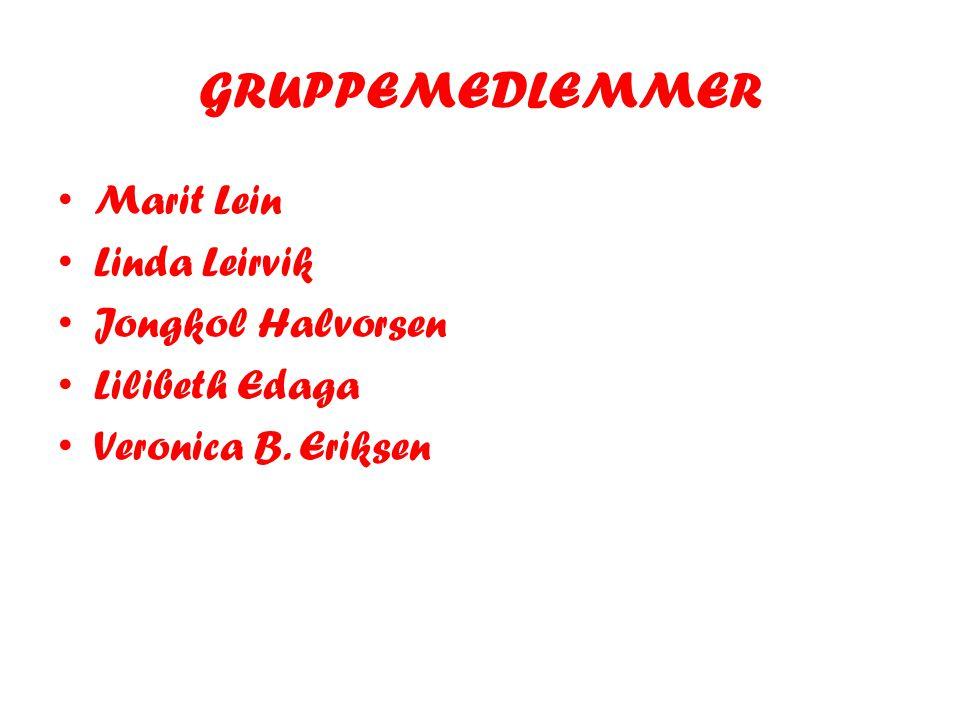 GRUPPEMEDLEMMER • Marit Lein • Linda Leirvik • Jongkol Halvorsen • Lilibeth Edaga • Veronica B. Eriksen