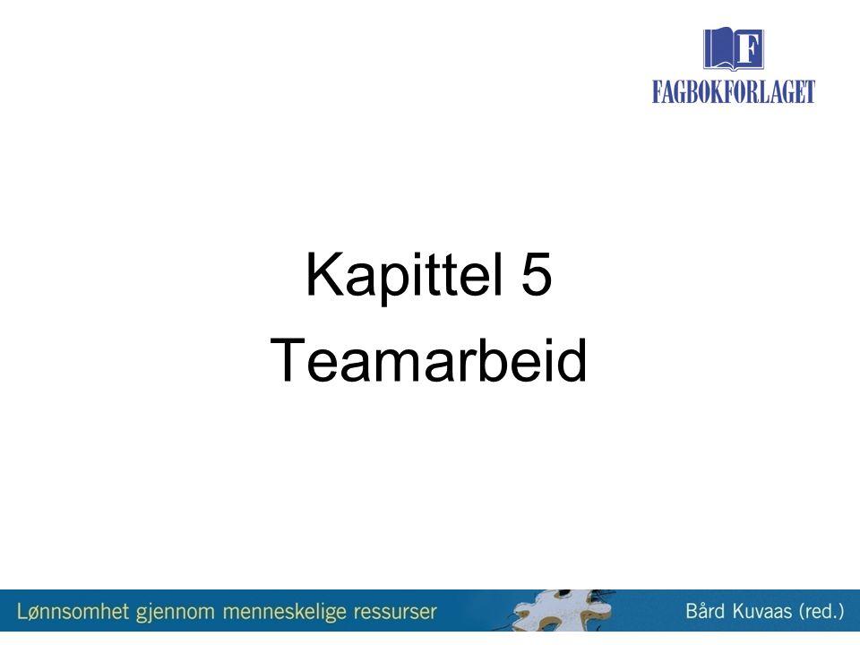 Kapittel 5 Teamarbeid
