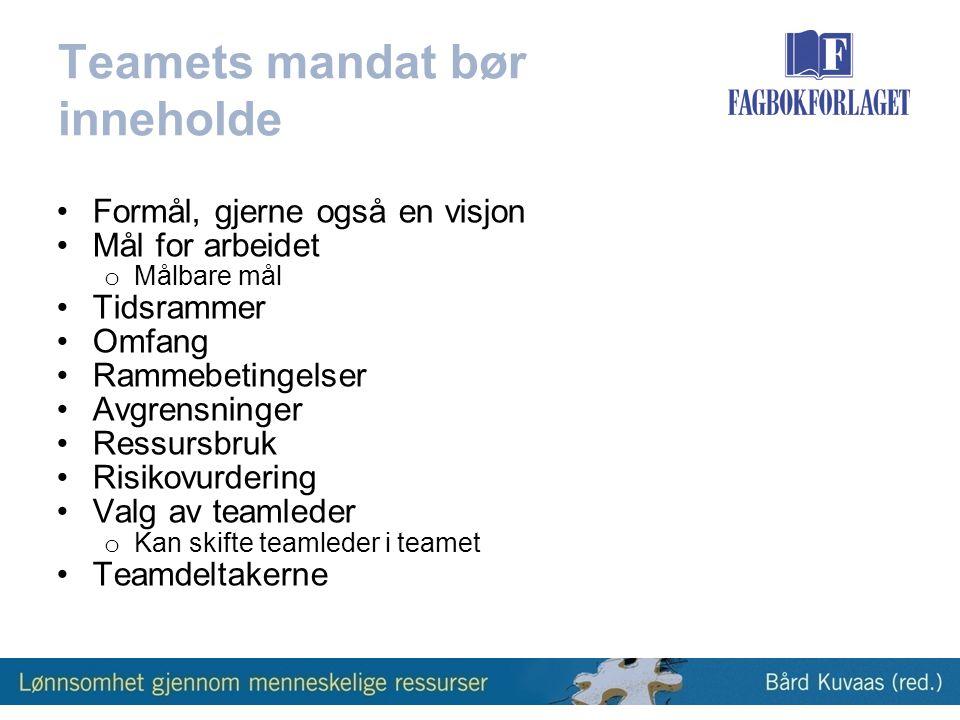 Teamets mandat bør inneholde •Formål, gjerne også en visjon •Mål for arbeidet o Målbare mål •Tidsrammer •Omfang •Rammebetingelser •Avgrensninger •Ressursbruk •Risikovurdering •Valg av teamleder o Kan skifte teamleder i teamet •Teamdeltakerne