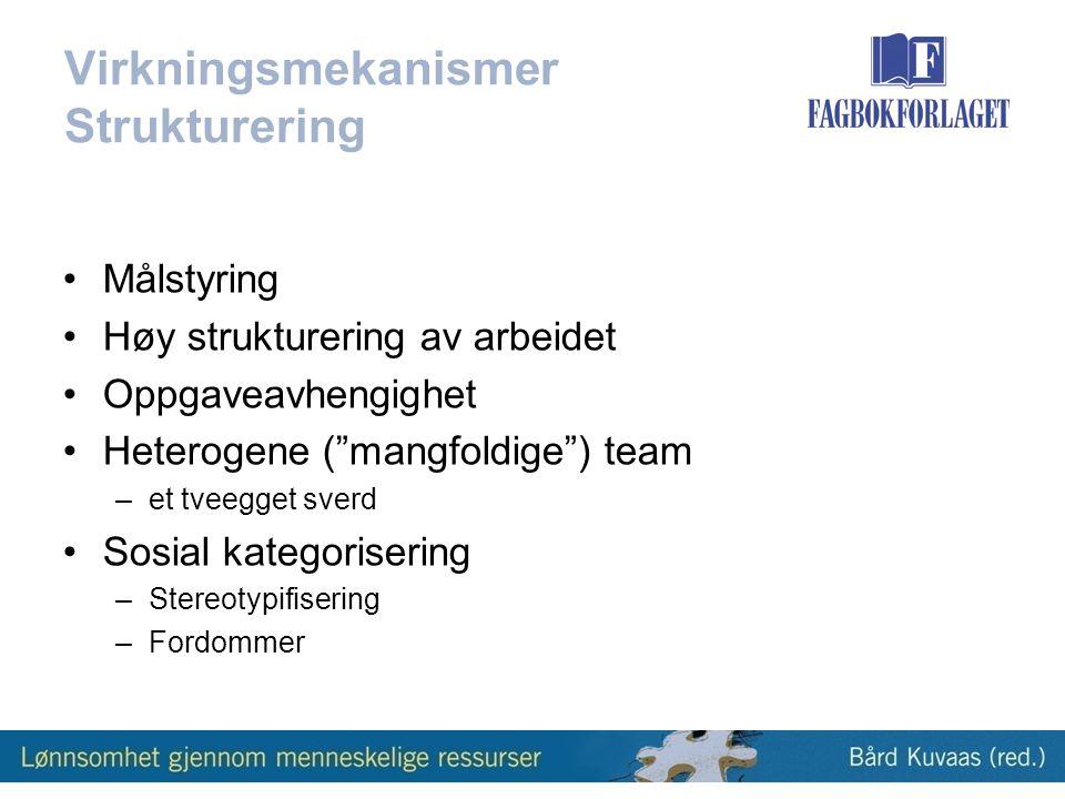 Virkningsmekanismer Strukturering •Målstyring •Høy strukturering av arbeidet •Oppgaveavhengighet •Heterogene ( mangfoldige ) team –et tveegget sverd •Sosial kategorisering –Stereotypifisering –Fordommer