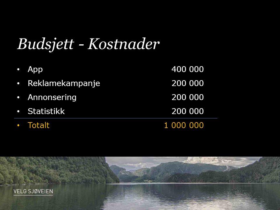 Budsjett - Kostnader • App400 000 • Reklamekampanje200 000 • Annonsering200 000 • Statistikk200 000 • Totalt1 000 000