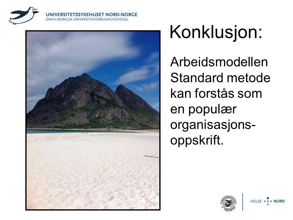 Konklusjon: Arbeidsmodellen Standard metode kan forstås som en populær organisasjons- oppskrift.