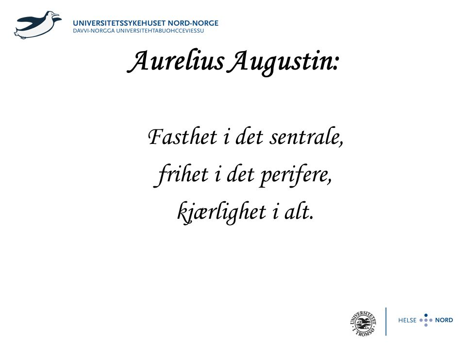 Aurelius Augustin: Fasthet i det sentrale, frihet i det perifere, kjærlighet i alt.