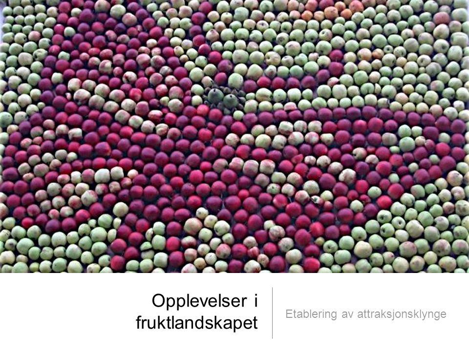 © Telemarksforsking telemarksforsking.no06.06.2011 2 SOLVEIG SVARDAL