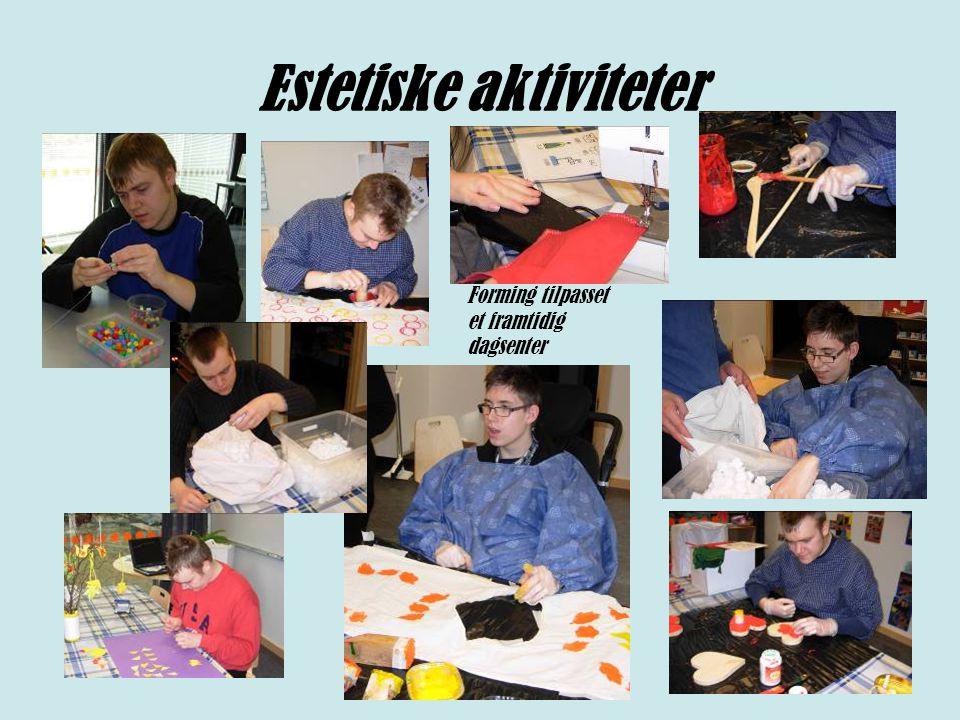 Estetiske aktiviteter Forming tilpasset et framtidig dagsenter
