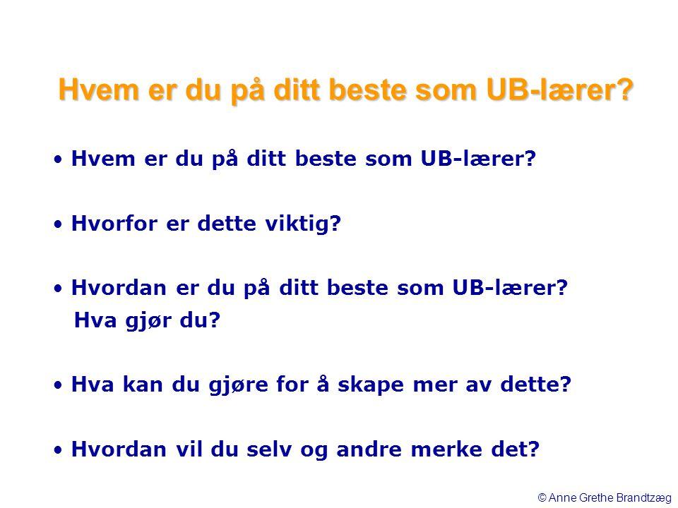 • Hvem er du på ditt beste som UB-lærer? • Hvorfor er dette viktig? • Hvordan er du på ditt beste som UB-lærer? Hva gjør du? • Hva kan du gjøre for å