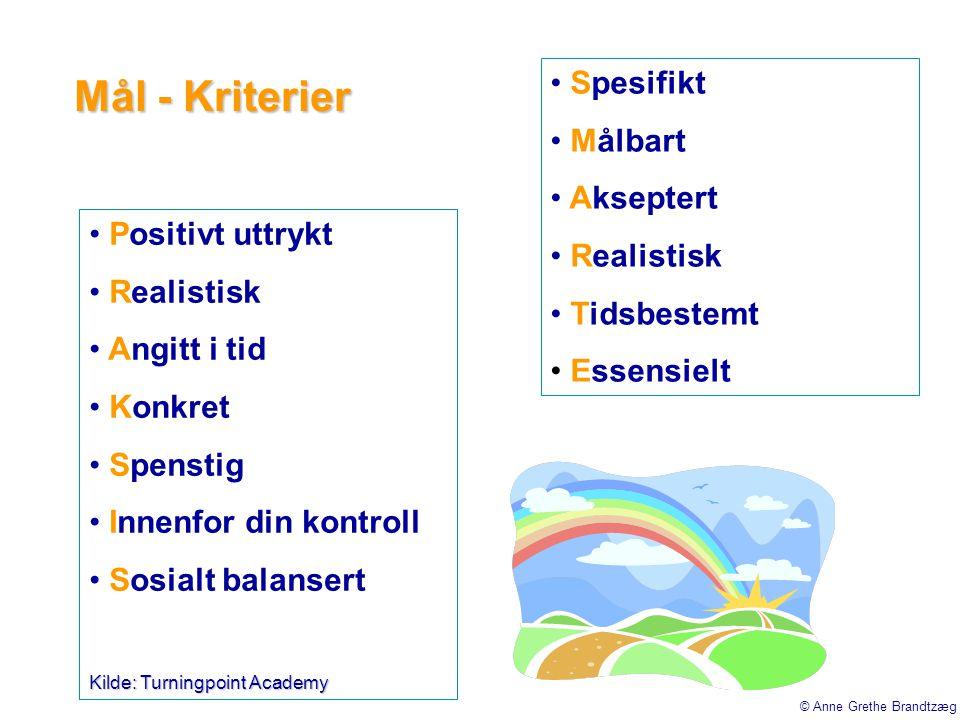 Mål - Kriterier • Positivt uttrykt • Realistisk • Angitt i tid • Konkret • Spenstig • Innenfor din kontroll • Sosialt balansert Kilde: Turningpoint Ac