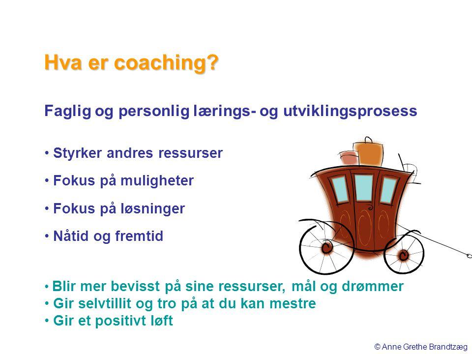 Faglig og personlig lærings- og utviklingsprosess • Styrker andres ressurser • Fokus på muligheter • Fokus på løsninger • Nåtid og fremtid • Blir mer