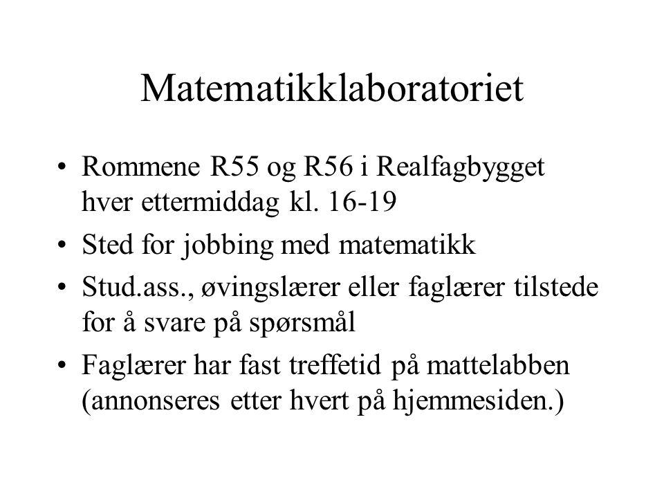 Matematikklaboratoriet •Rommene R55 og R56 i Realfagbygget hver ettermiddag kl. 16-19 •Sted for jobbing med matematikk •Stud.ass., øvingslærer eller f