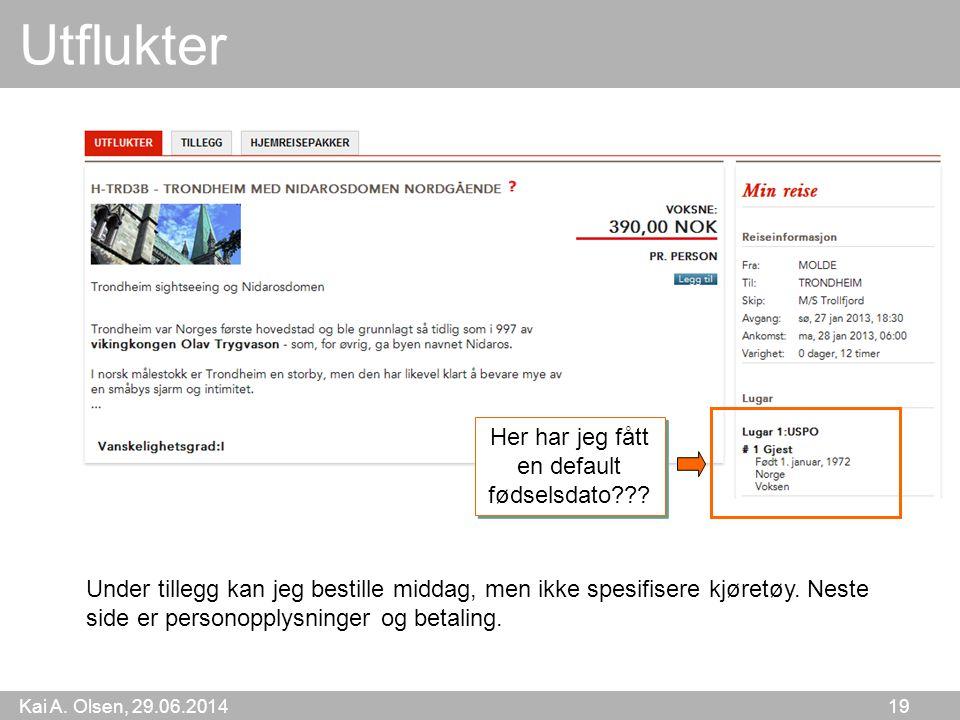 Kai A. Olsen, 29.06.2014 19 Utflukter Under tillegg kan jeg bestille middag, men ikke spesifisere kjøretøy. Neste side er personopplysninger og betali