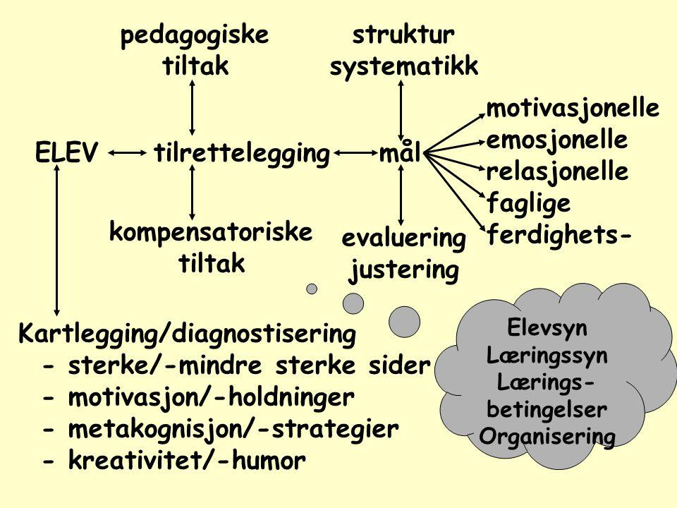 pedagogiske tiltak kompensatoriske tiltak Kartlegging/diagnostisering - sterke/-mindre sterke sider - motivasjon/-holdninger - metakognisjon/-strategier - kreativitet/-humor ELEVtilrettelegging struktur systematikk evaluering justering motivasjonelle emosjonelle relasjonelle faglige ferdighets- mål Elevsyn Læringssyn Lærings- betingelser Organisering
