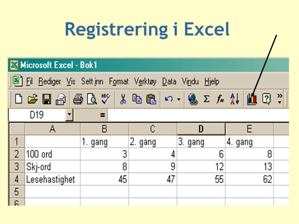 Registrering i Excel