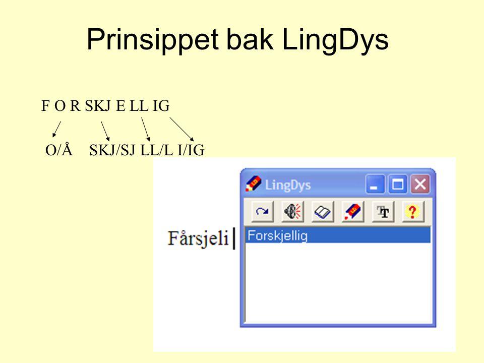 Prinsippet bak LingDys F O R SKJ E LL IG O/Å SKJ/SJ LL/L I/IG