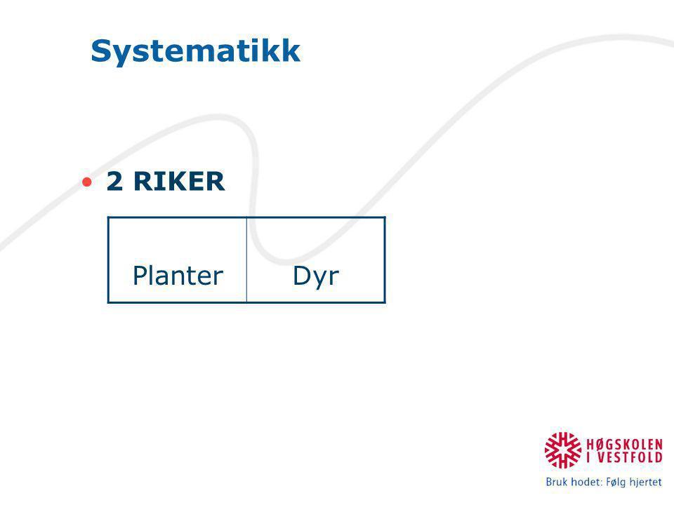 Systematikk •2 RIKER PlanterDyr