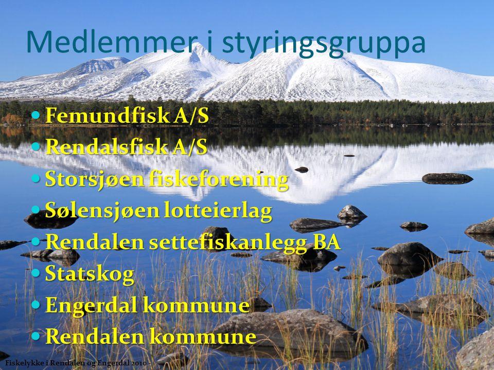Medlemmer i styringsgruppa  Femundfisk A/S  Rendalsfisk A/S  Storsjøen fiskeforening  Sølensjøen lotteierlag  Rendalen settefiskanlegg BA  Stats
