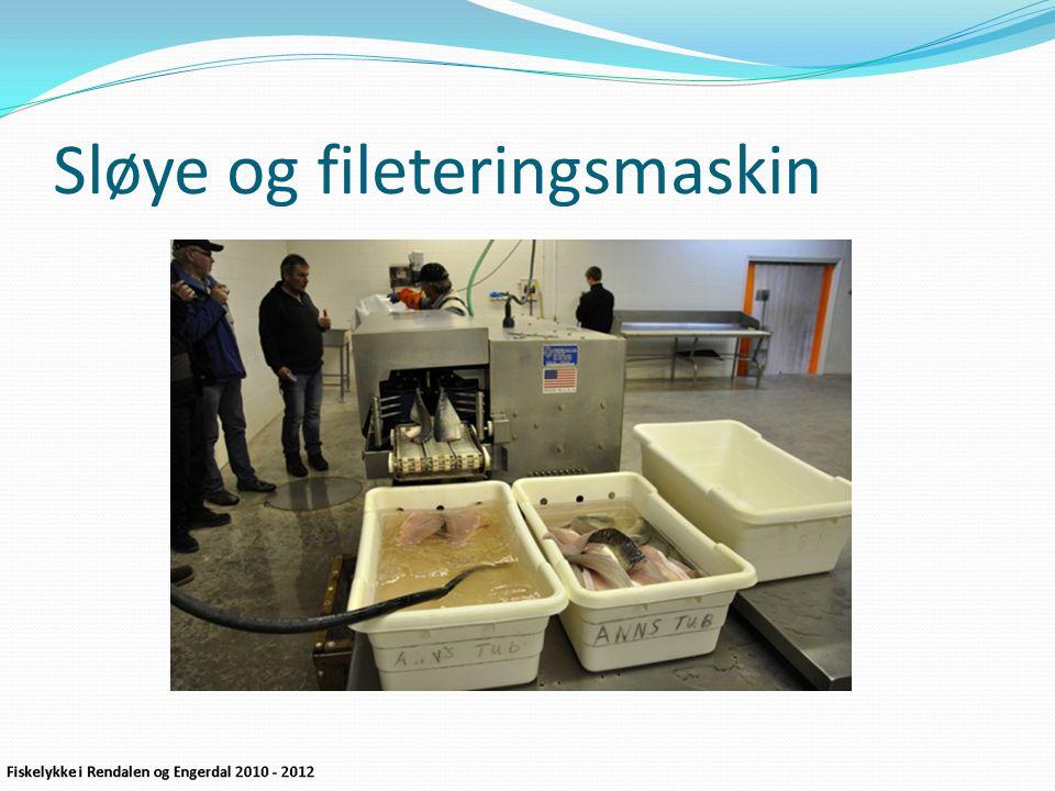 Sløye og fileteringsmaskin