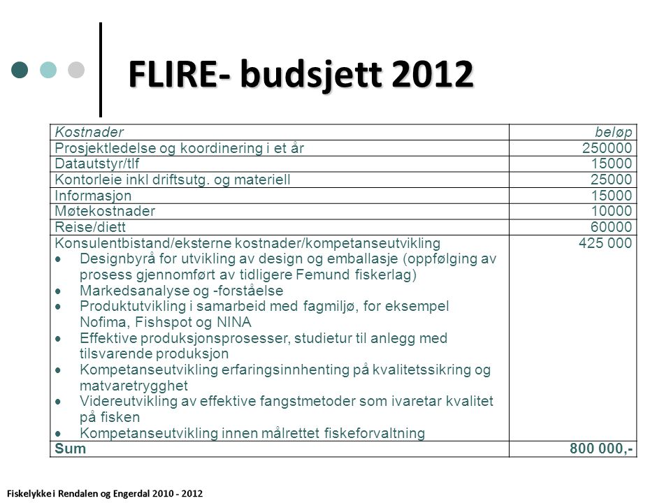 FLIRE- budsjett 2012 Kostnaderbeløp Prosjektledelse og koordinering i et år250000 Datautstyr/tlf15000 Kontorleie inkl driftsutg.