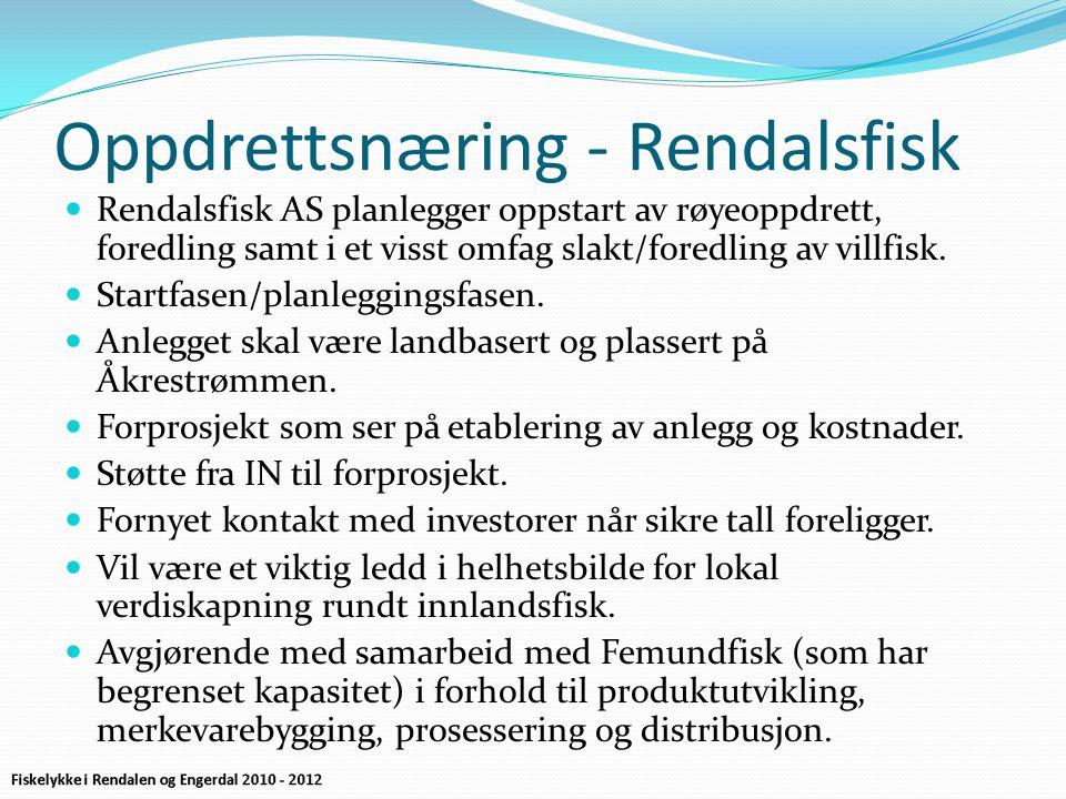Oppdrettsnæring - Rendalsfisk  Rendalsfisk AS planlegger oppstart av røyeoppdrett, foredling samt i et visst omfag slakt/foredling av villfisk.  Sta