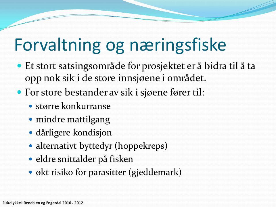 Resultat fra fiskesesongen 2011  Sølensjøen 15 tonn sik.