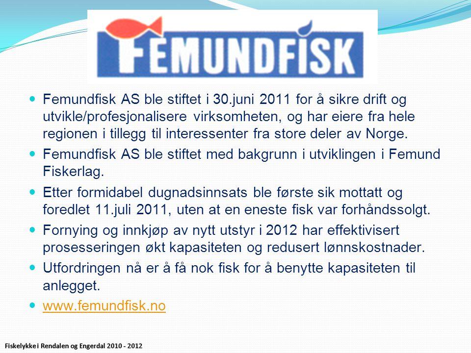  Femundfisk AS ble stiftet i 30.juni 2011 for å sikre drift og utvikle/profesjonalisere virksomheten, og har eiere fra hele regionen i tillegg til interessenter fra store deler av Norge.