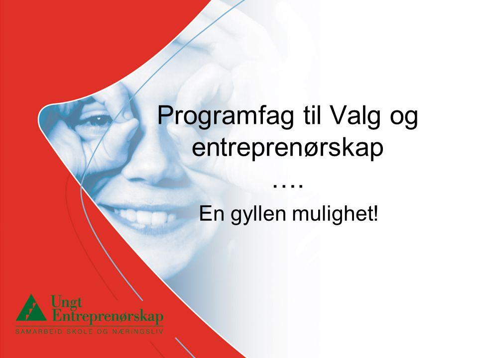 Programfag til Valg og entreprenørskap …. En gyllen mulighet!