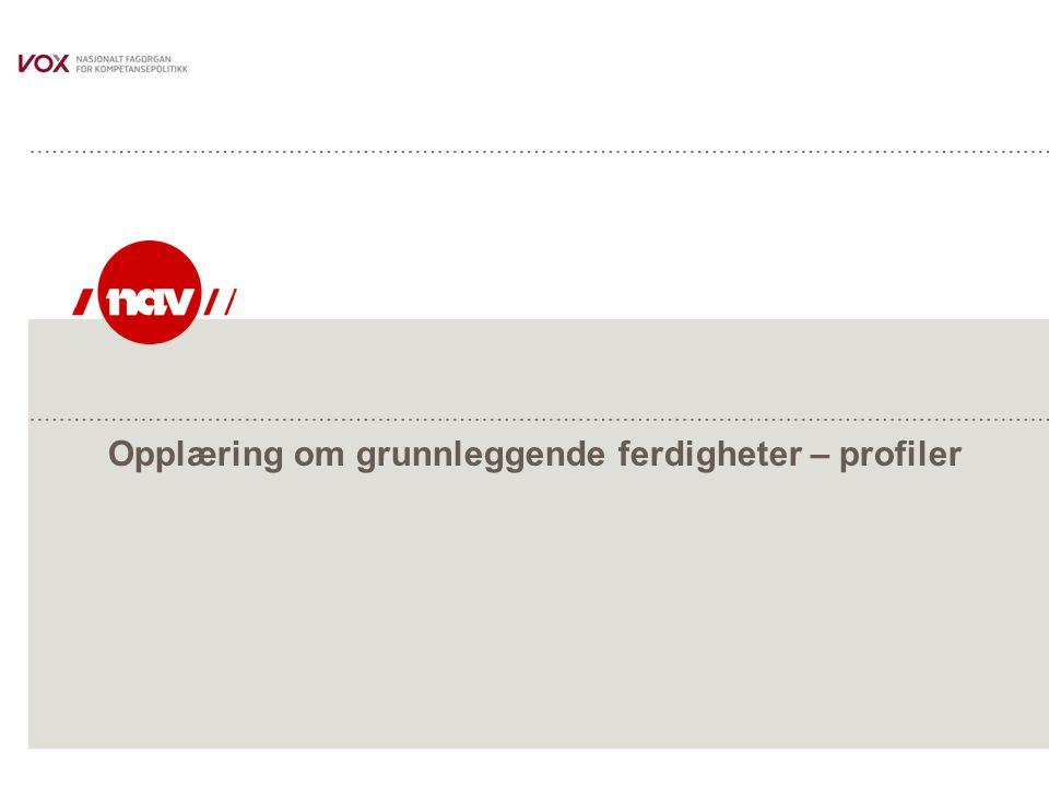 NAV, 29.06.2014Side 32 Hvor kan man henvise for kartlegging av nivå grunnleggende ferdigheter  - - Fyll ut med konkrete leverandører - -  -  Må utarbeides lokalt – en oversikt må utarbeides av NAV fylke i forkant opplæringen.