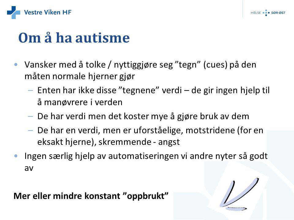 Om å ha autisme • Detta var moro det skal jeg aldri mer gjøre!!!