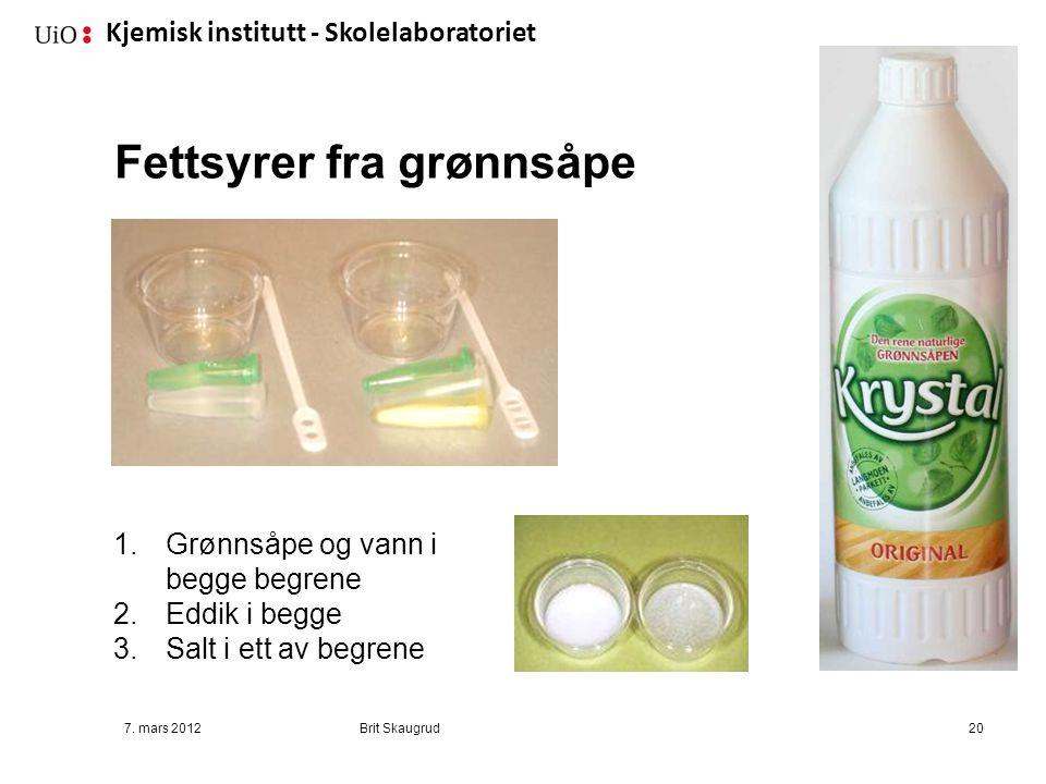 Kjemisk institutt - Skolelaboratoriet Fettsyrer fra grønnsåpe 7. mars 2012Brit Skaugrud20 1.Grønnsåpe og vann i begge begrene 2.Eddik i begge 3.Salt i