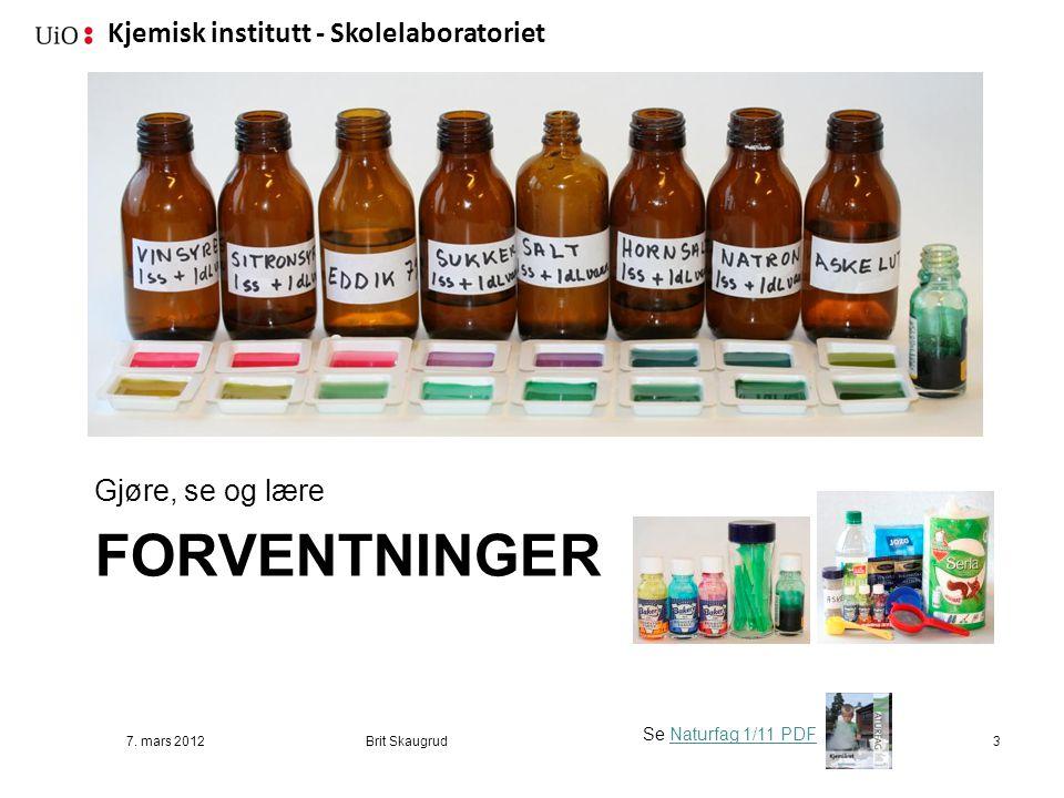 Kjemisk institutt - Skolelaboratoriet FORVENTNINGER Gjøre, se og lære 7. mars 2012Brit Skaugrud3 Se Naturfag 1/11 PDFNaturfag 1/11 PDF