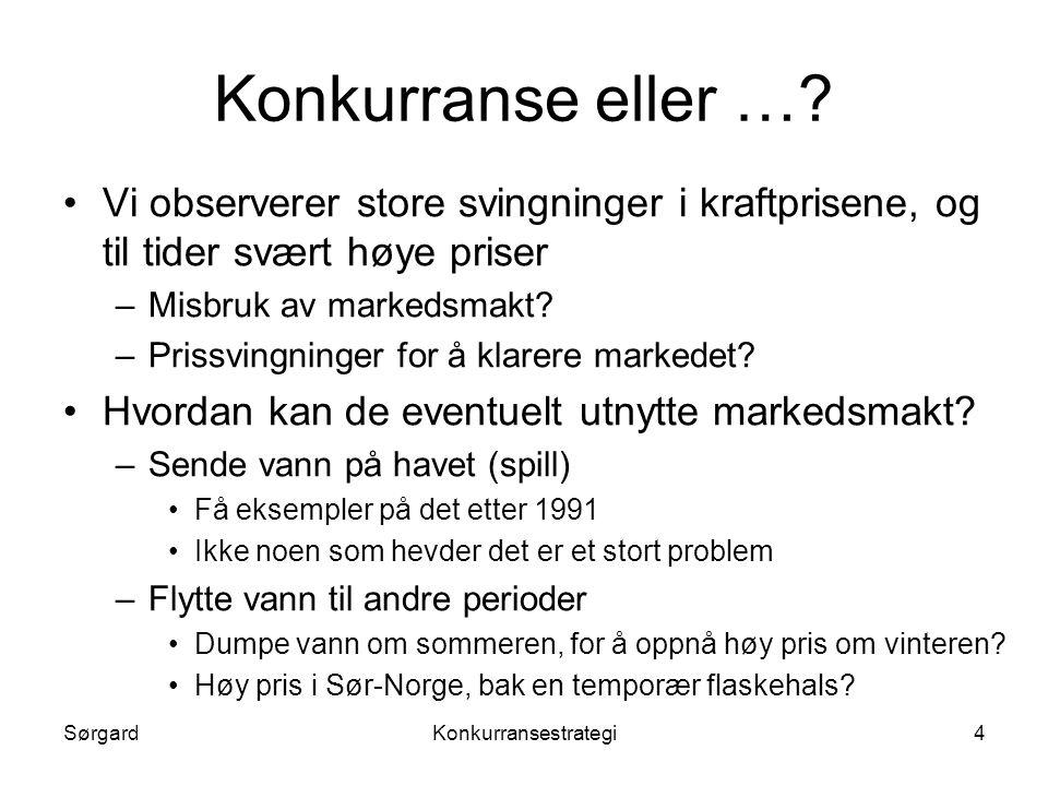 SørgardKonkurransestrategi15 Forutsetninger forts.