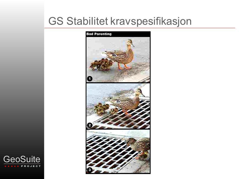 GS Stabilitet kravspesifikasjon