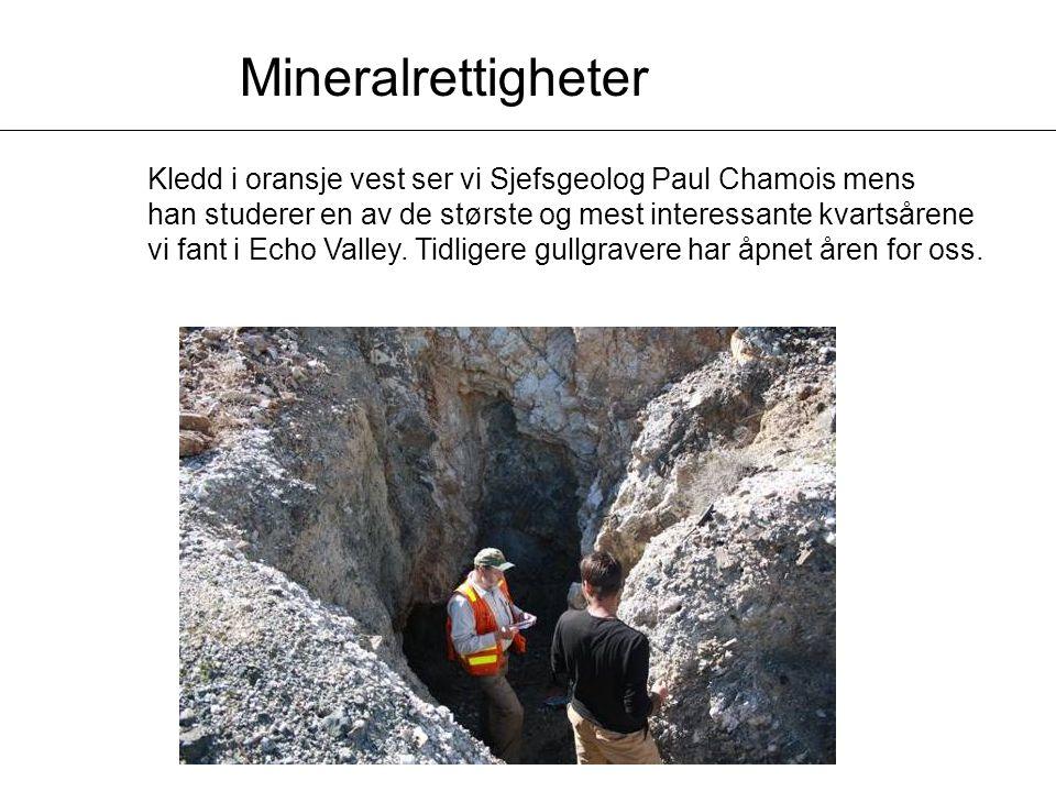 Kledd i oransje vest ser vi Sjefsgeolog Paul Chamois mens han studerer en av de største og mest interessante kvartsårene vi fant i Echo Valley.