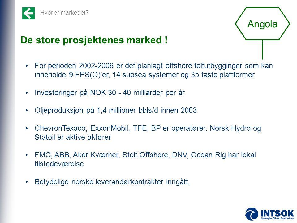 Hvor er markedet? De store prosjektenes marked ! •For perioden 2002-2006 er det planlagt offshore feltutbygginger som kan inneholde 9 FPS(O)'er, 14 su
