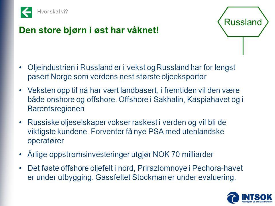Hvor skal vi? Den store bjørn i øst har våknet! •Oljeindustrien i Russland er i vekst ogRussland har for lengst pasert Norge som verdens nest største